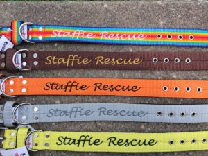 Collier nylon Staffie-Rescue – Edition 2018
