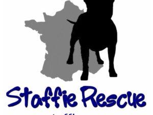 Autocollant logo Staffie Rescue