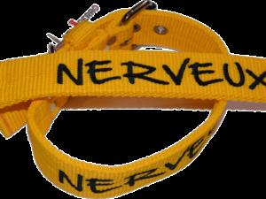 Collier nylon «Nerveux»