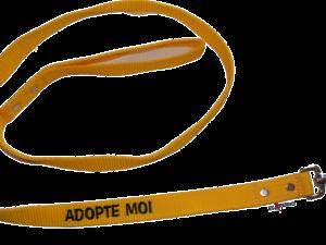 Laisse nylon jaune «adopte-moi»