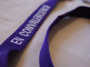 Laisse nylon violette «en convalescence»