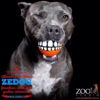 zedogshop